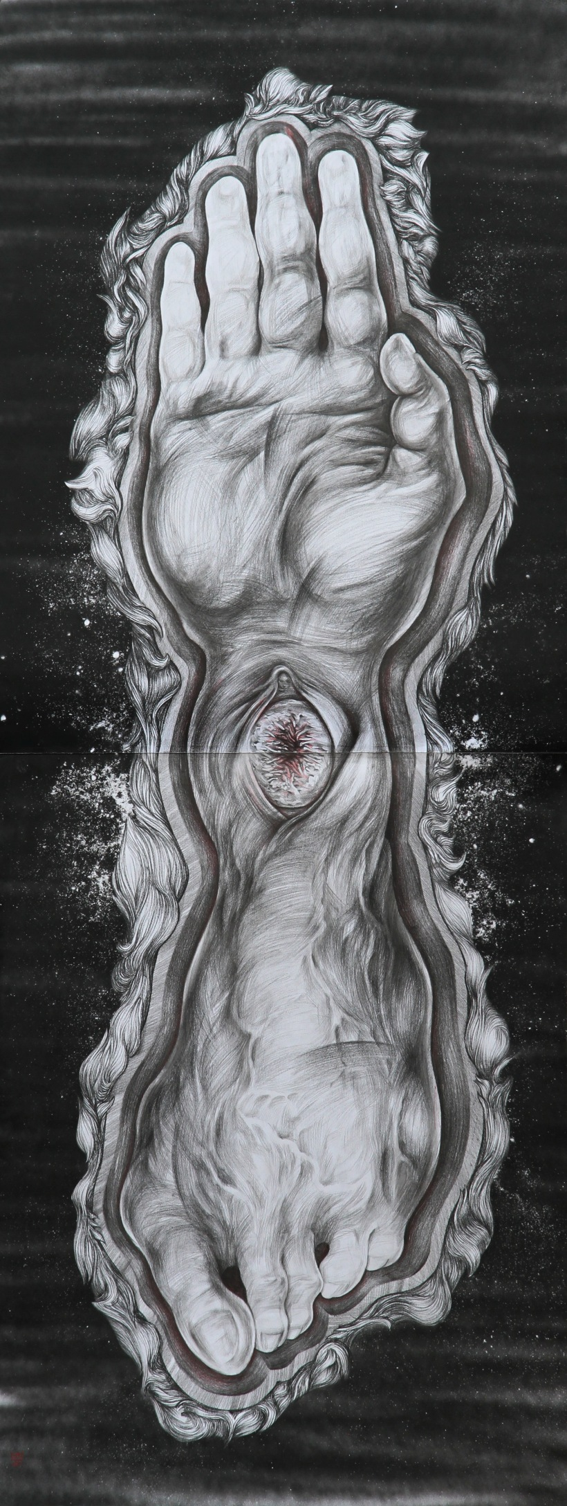Embryo drawing by artist Bogdan Dobrota, expressive image of body brought together by inexplicable internal force and sacramental vigour.